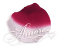 France Burgundy and White Silk Rose Petals Wedding 100