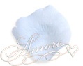 Blue Sky  Silk Rose Petals Wedding