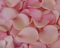 Light Pink Fresh Rose Petals Wedding 3000