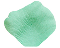 Pool Green Aqua Silk Rose Petals Wedding