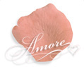 Apricot Light Terracotta Silk Rose Petals Wedding